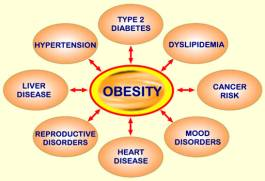 obesity and type2 diabetes