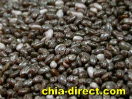 high quality deep colored chia seeds